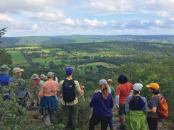 A Walk in the Woods to Celebrate Conservation