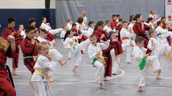 Pawling Karate Raises Over $800 For Parkinson's Disease Research