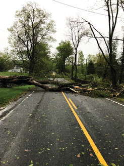Pawling Weathers the Storm