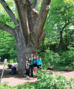 Environmental Groups Preserve 216 Acres in Pawling