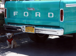 Annual Car Show in the Village of Pawling on Sunday, June 9.