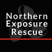 NER 2021 Square Logo.jpg
