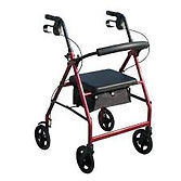 wheelie walker.jpg