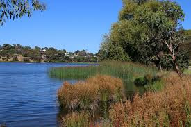 Blue Lake, Ocean Grove - Perfect for Wheelchairs, as a Sensory Walk or Picnic