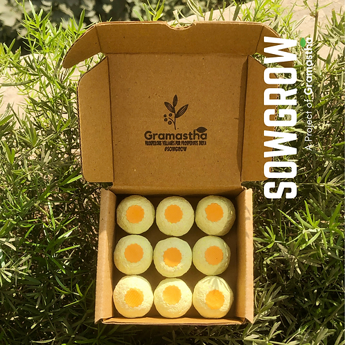 SowGrow Tarota Seedballs Box
