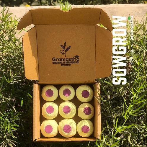 SowGrow Brinjal Seedballs Box