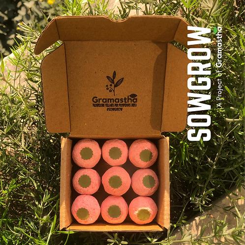 SowGrow Amaranthus Seedballs Box