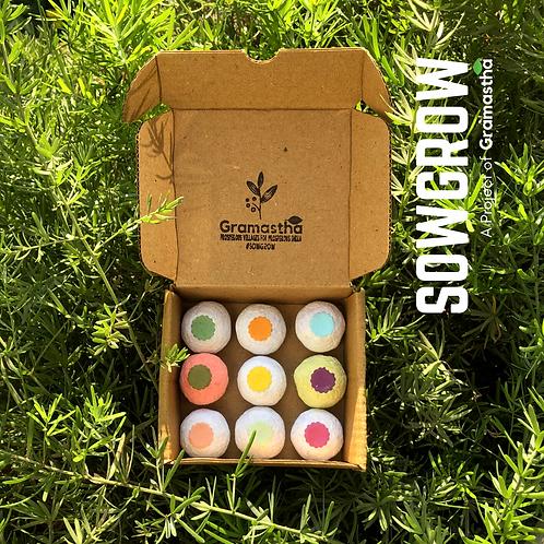 SowGrow Seedballs Mix Box