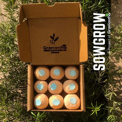 SowGrow Coriander Seedballs Box