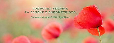 Podporna skupina za ženske z endometriozo