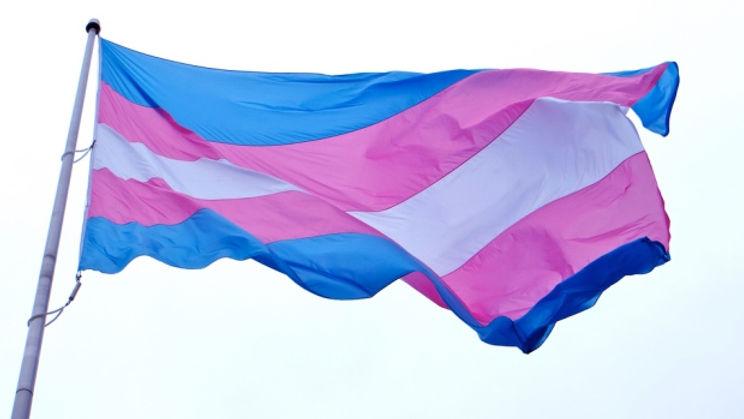 transgender-flag.jpg