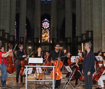 Restitution  fourmilière 2019 cathédrale
