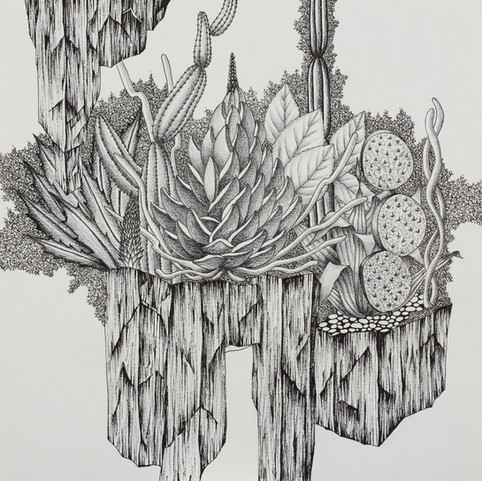 gardening_k #3