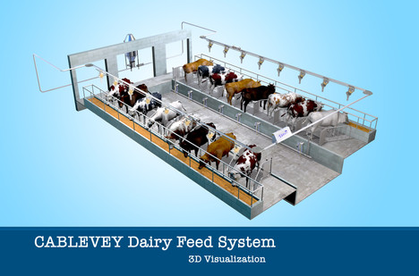 Cablevey Dairy Feed System