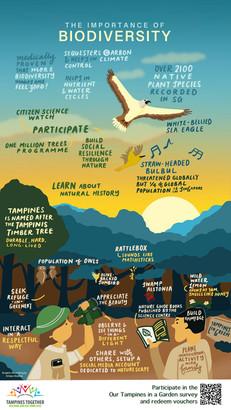 Artese Studios | Tampines Eco-Conversations - The importance of biodiversity