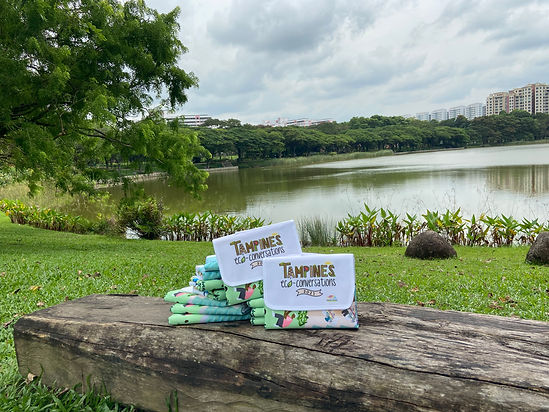 Tampines-Picnic-Augmented-Reality.jpg