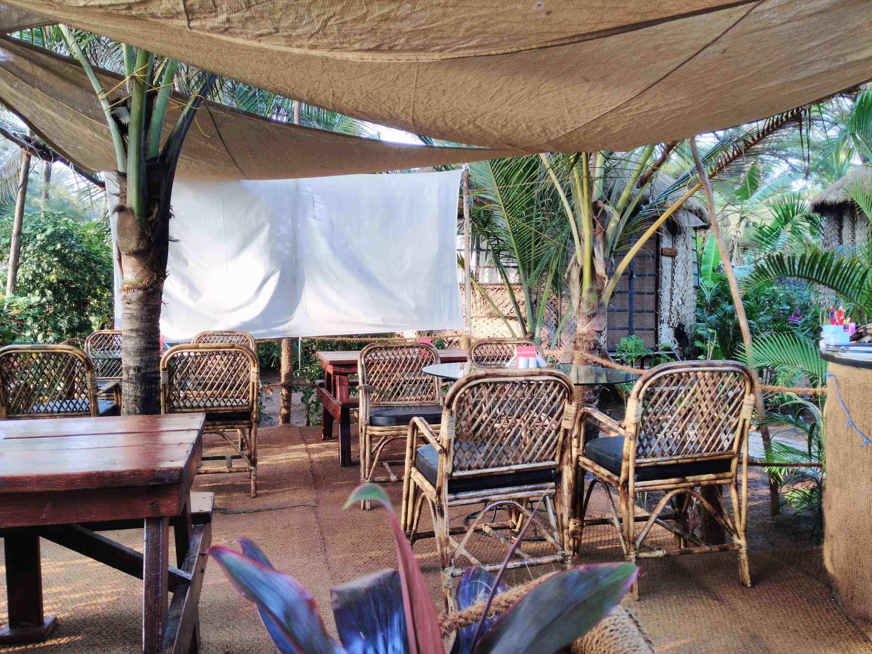 Veggie_Turtle_restaurant_Galgibaga_beach