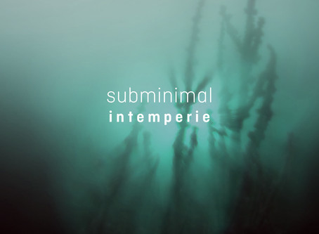 Intemperie - Ambient album by Subminimal