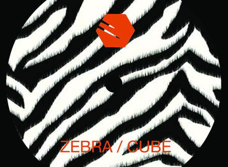 Zebra - Cube by Futuregrapher & Cold