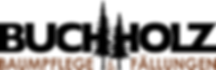 buchholz-logo_final.png