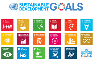 All you need to know about the SDGs