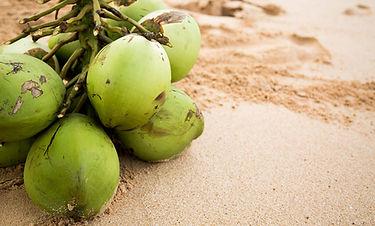 coconut sand.jpg