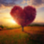 heart_background-300x199.jpg