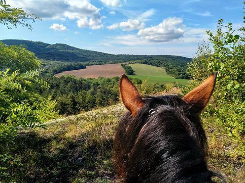 horseback riding Budapest