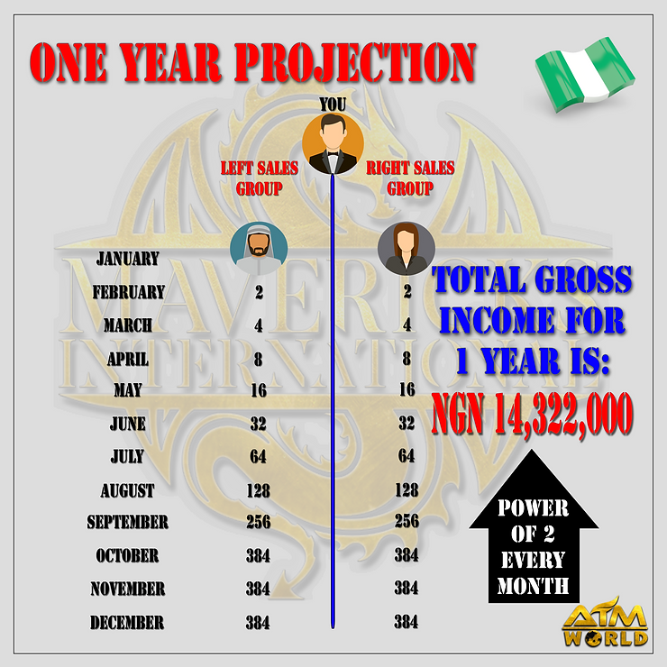 ONE YEAR PROJECTION NIGERIA.png