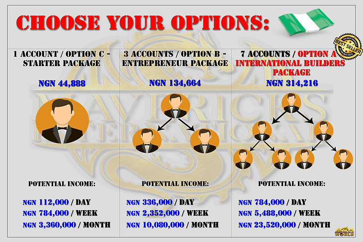 1 3 7 options NIGERIA.png
