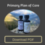 Primary Plan of Care-imunstem-ad.png