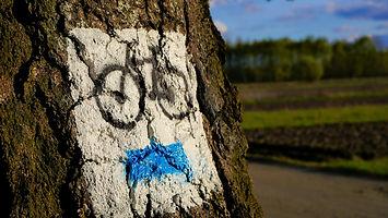 bike-2970293_1920.jpg