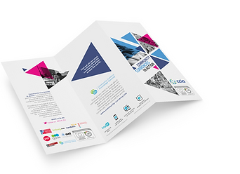 Tri fold brochure design for NEF