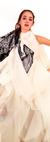 Henna Sleeved Organza Dress
