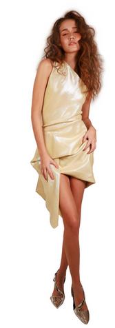 Metallic Drapped Short Dress