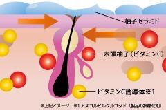 ビタミンC.jpg