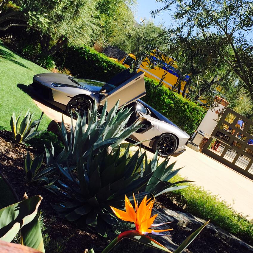 Lamborghini 375.jpg