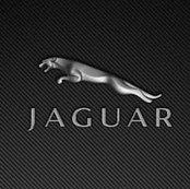 ALL Jaguar CARWRAP