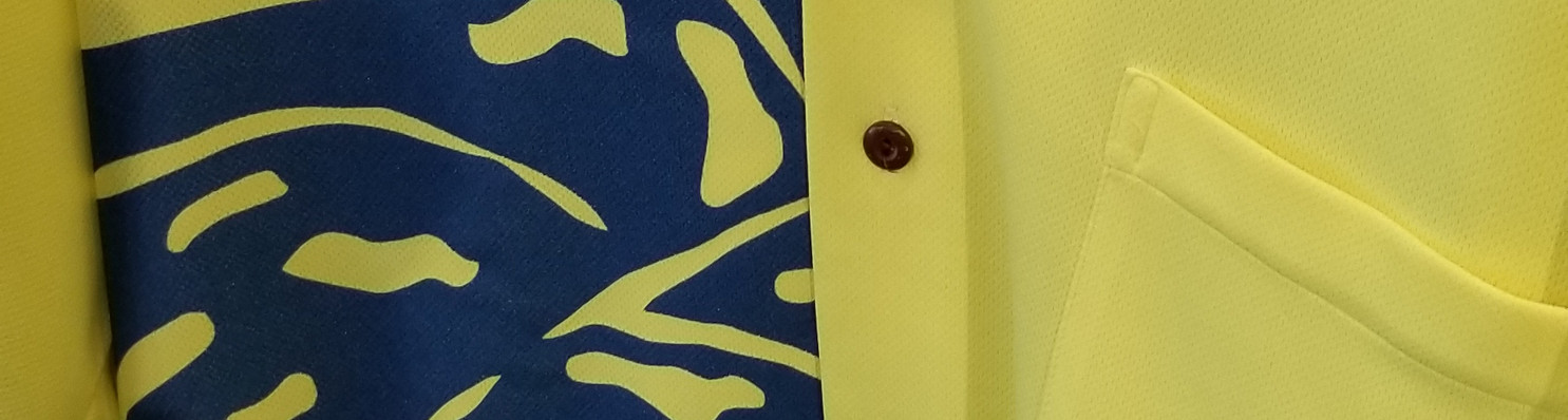 safety yellow blue monstera.jpg