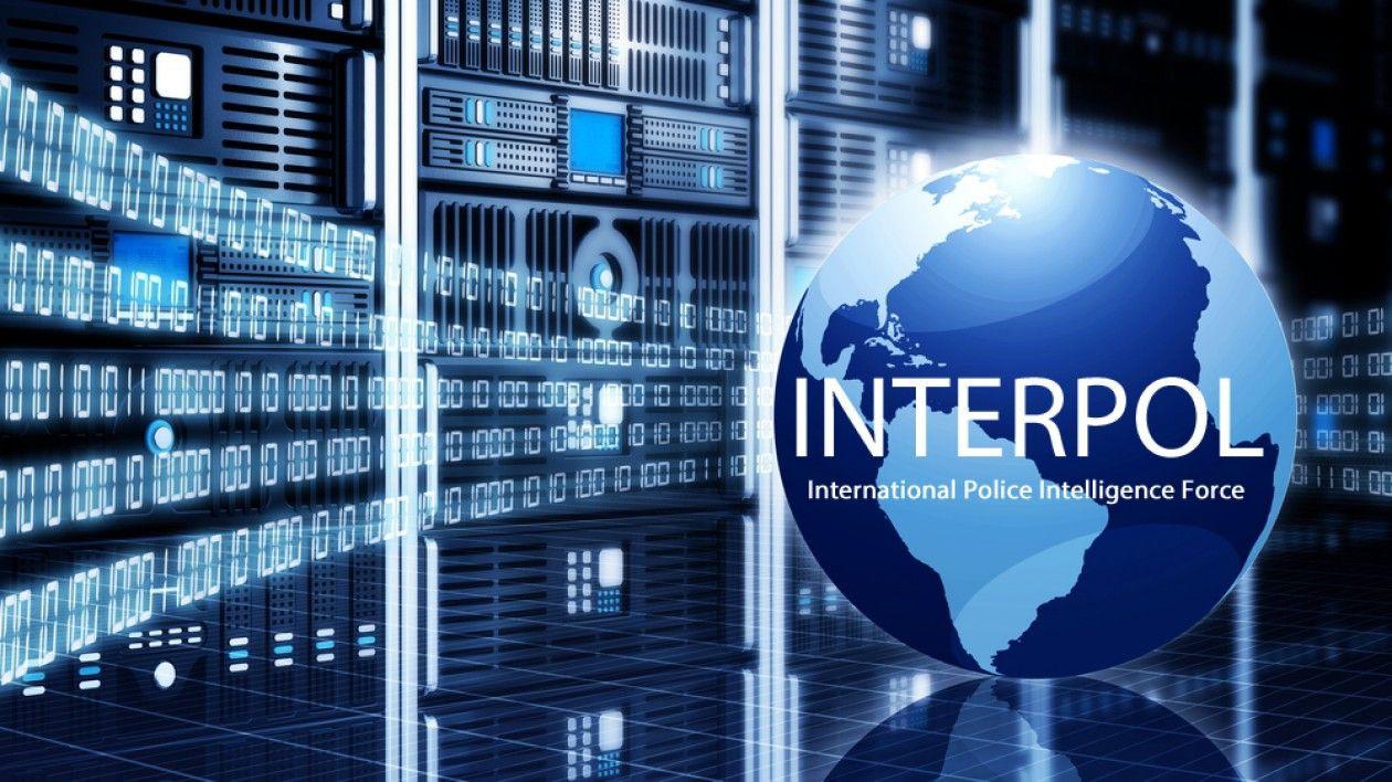 Home | IPEX Reform