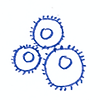 6-implementation-icon.png