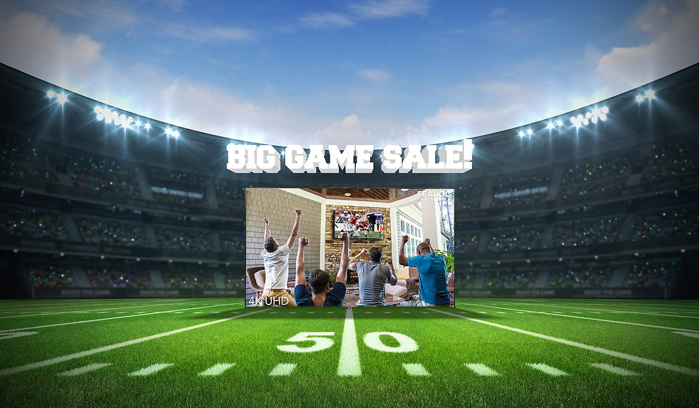 2021 Big Game Retail Ad 3(Website Banner