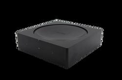 Weatherproof Sonos Amp