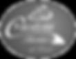 Custom-Homes-Texas-logo.png