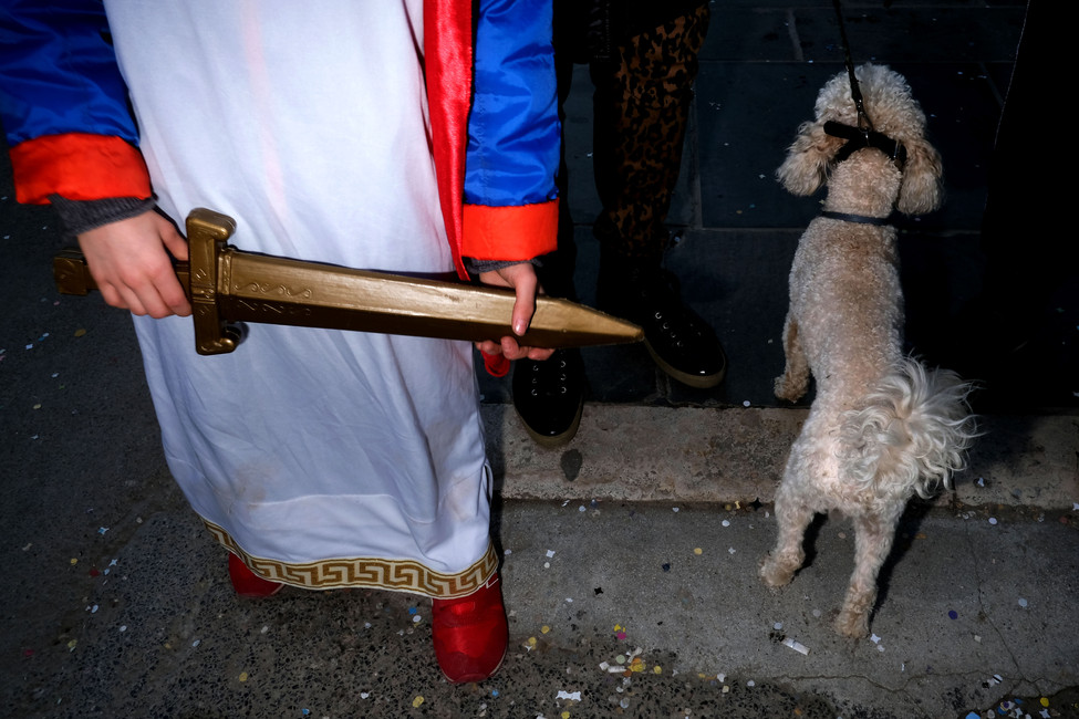 The sword in the dog