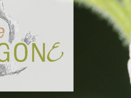 Plaquettes et affiche des jardins de tétragone