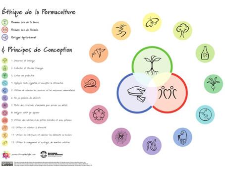 Les 12 principes de la permaculture de David Holmgren