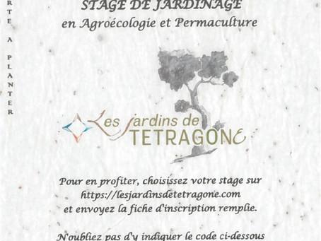 Une Idée cadeau pour Noël : Un stage en Agroécologie !!