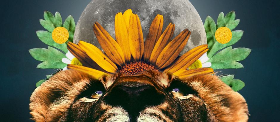 Exploring the New Moon in Leo Energy & Meditation