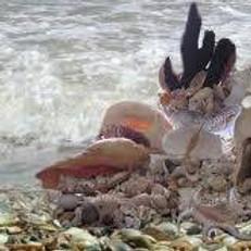 Wealth & Abundance Ritual honoring Orisha Aje Shaluga, Ori & Ancestors
